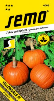 Tekvica Yellowgirls F1  SEMO