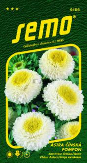 Astra Pompon white and yellow  SEMO
