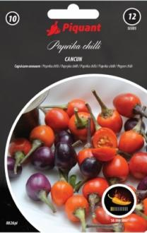 Paprika Cancun PIQUANT - chilli